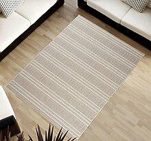 TAPISO Cottage Kollektion | Flachgewebe Teppich Sisal Optik | Muster Geometrisch Streifen in Hellgrau| Wohnzimmer Küchen Terrassen Teppiche 120 x 170 cm