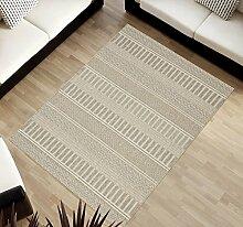 TAPISO Cottage Kollektion | Flachgewebe Teppich Sisal Optik | Muster Geometrisch Streifen in Hellgrau | Wohnzimmer Küchen Terrassen Teppiche 120 x 170 cm