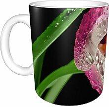 Tasse Kaffee Schöne rosa Tulpe Blume X Sommer