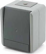 Taster 1-Polig + Kontrollleuchte grau IP44 10A 250V SF11GYTI