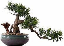 TBUDAR Artificial Tree Chinesische gefälschte