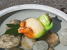 Teich Frosch Rückenschwimmer grün/creme/braun