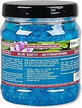 Teichpoint Blue Bakto - Aktivbakterien, Starterbakterien für Ihren Koi Teich und Koiteich Filter (1 Liter)