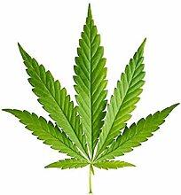 TENNER.LONDON Set von 5 Cannabis Bügeln auf