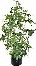TenWaterloo Künstliche Cannabis-Pflanze,