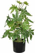TenWaterloo Künstliche Marihuana-Pflanze,