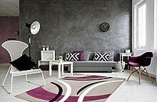 Teppich Havanna 409Silver 80x 150cm