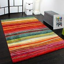 Teppich Modern Splash Designer Teppich Bunt Streifen Model Neu OVP, Grösse:200x290 cm