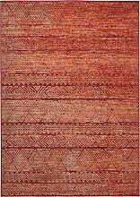 Teppich Rick, rot (60/110 cm)