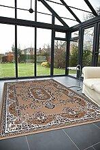Teppich Stil Klassisch - Top Preis und hohe Qualität ROYAL SHIRAZ 2063-BEIGE 160x230