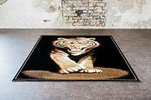 Teppich Tiger Safari Größe 115 cm x 160 cm
