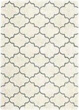 Teppich Wohnzimmer Carpet hochflor Design LOGAN LACE UNI RUG 100% Polypropylen 120x170 cm Rechteckig Grau | Teppiche günstig online kaufen