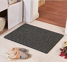 Teppich/ Wohnzimmer Eingang Fußmatte an der Tür/Bad Antirutschmatten/Wasserdichte Kunststoff Staub Rub Fuß Decke-C 80x120cm(31x47inch)