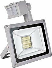 TEquem Kaltweiß 30 Watt LED SMD Flutlicht