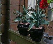 Testrut 601281 Kunstpflanze Ananas-Pflanze im Keramiktopf 17x17x38 cm