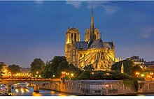 TFjXB Notre Dame de Paris Voll & rund