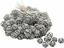 TGG Zypressen Zapfen geweißt 2-3cm 1kg, Cypressen