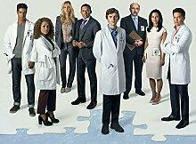 The Good Doctor Season 1 Poster auf