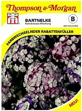 THOMPSON & MORGAN Bartnelke (Dianthus barbatus)