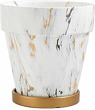 Thwarm Keramik Marmorkorn Blumentopf Sukkulenten