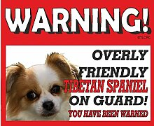 Tibet Spaniel Guard Dog Metall Schild 246