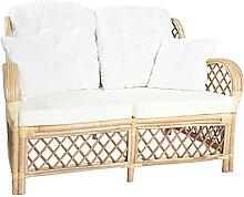 Tidyard 2-Sitzer Sofa, Gartensofa mit Kissen