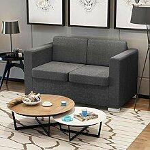 Tidyard 2-Sitzer Sofa Stoff Dunkelgrau Couch