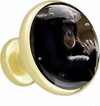 Tierischer schwarzer Gorilla Gold 4 Möbelknöpfe