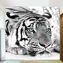 Tiger Schwarz-Weiß-Tapete 3D Tapete Großes Fresko Wohnzimmer Sofa TV Kulisse Schlafzimmer Tapete XL XXL XXXL , xxl