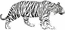 """Tiger Wand Aufkleber Aufkleber 2–Aufkleber Aufkleber und Wandbild für Kinder Jungen Mädchen Raum und Schlafzimmer. Cat Wandaufkleber für Home Decor und Dekoration _ Animal Silhouette Wandbild, Vinyl, schwarz, 24 in. (24""""W x 11.2""""H)"""