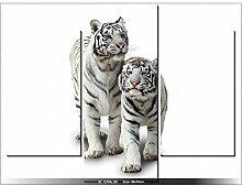 TIGRES - TABLEAU IMPRIME MODERNE - DECO - NEW DESIGN
