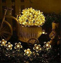 Timewanderer 7.5m 50er Bling Blumen LED 3xAA Batteriebetrieben Lichterkette für DIY Dekoration (Warmweiß)