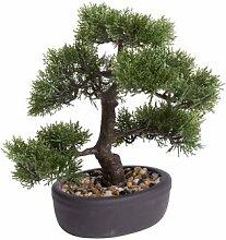 Tisch-Kunstbaum Bonsai im Topf Die Saisontruhe