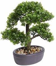Tisch-Kunstbaum Ficus Bonsai im Topf Die