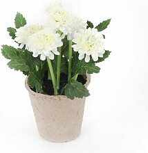 Tisch-Kunstpflanze Chrysantheme im Topf Lily Manor