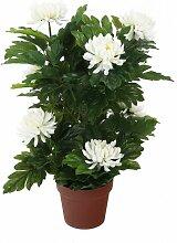 Tisch-Kunstpflanze Chrysantheme im Topf Marlow