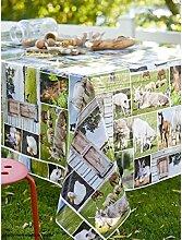 Tischdecke aus Wachstuch RUND 140cm Champetre Teller, mehrfarbig