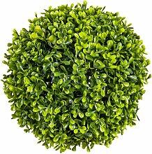 Tischpflanze Buchsbaum Die Saisontruhe Größe: 49