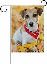 TIZORAX Jack Russell Terrier Welpe Hund,