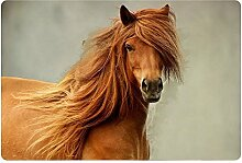 Tkopainsde Cool Pferd Gummi Rutschfeste Wc Badematte Teppich Matte, Fußmatte Fußmatte Indoor, S006 U Mode