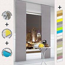 TODAMI Moderner Schiebevorhang, Flächenvorhang, Schiebegardine, einfach kürzbar, edle Leinenstruktur, blickdicht und lichtdurchlässig, 60x245 (BxH) - Graphi