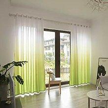 ToDIDAF Transparente Gardinen Vorhang, Gradient