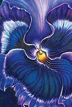 Toland Home Garden blau lackierter Stiefmütterchen Flagge, Textil, violett, L