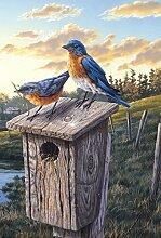 Toland Home Garden Garten-Flagge für Vögel