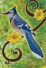 Toland Home Garten-Flagge mit blauem Jay, 71,1 x