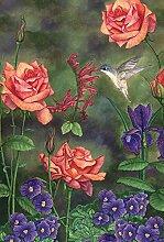 Toland Home Gartenfest für Kolibri, 28x101,6 cm,