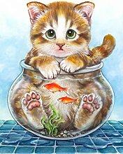 Toland Home Katzenfalle für den Garten, 71 x 102