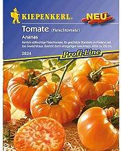 Tomate 'Ananas', 1 Tüte Samen
