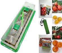 Tomaten-Anzucht-Set (beheizt): 'Buschige