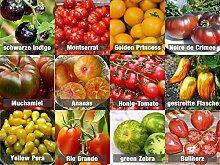 Tomaten-Mix/Samen-Set 12 x 10 Samen 100%